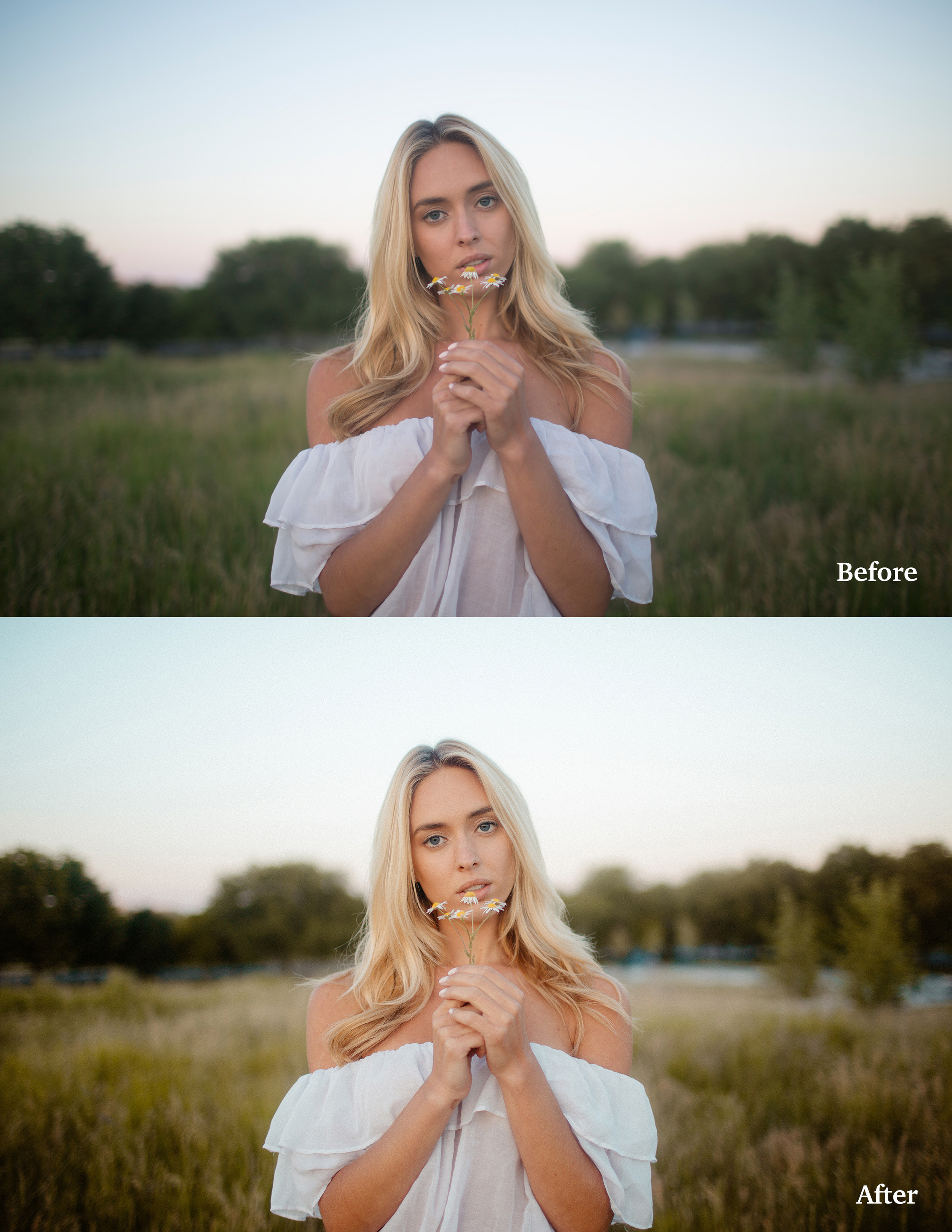 The Best Lightroom Presets for Photographers